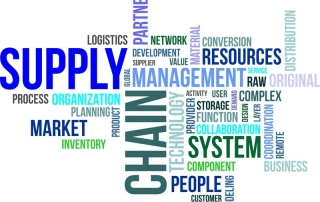 Demand & Supply Planning Wordcloud